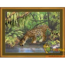 Леопард у воды