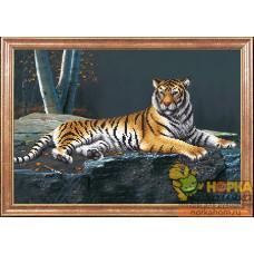 Ночной тигр