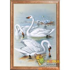 Лебеди на отливе