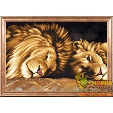 Львы отдыхают