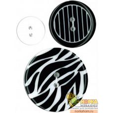 Caged Zebra
