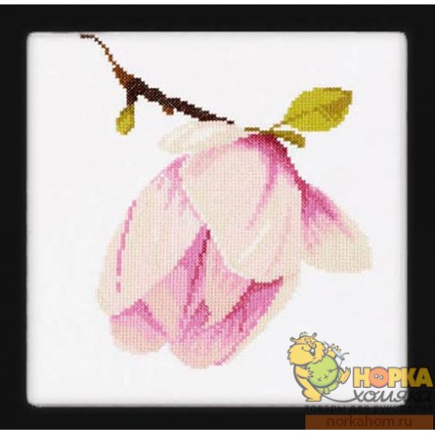 Magnolia Bud (на Аиде)