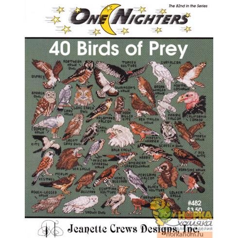 40 Birds of Prey