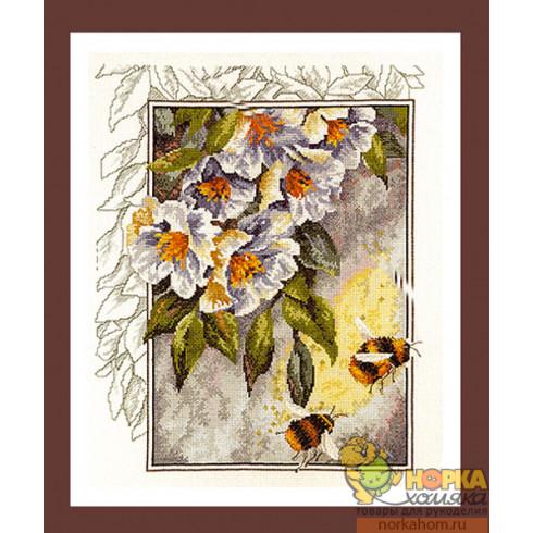 Пчелы в цветах