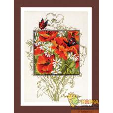 Маки и бабочки
