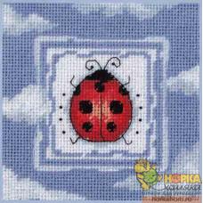 Ladybug Dream