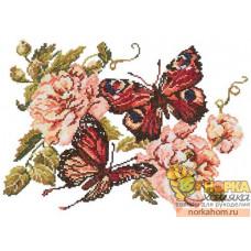 Пионы и бабочки