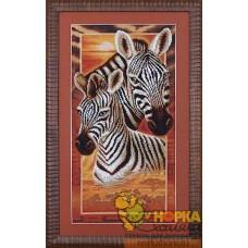 Африка - Зебры
