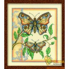 Тандем бабочек