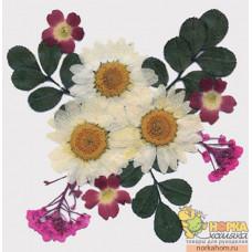 """Сухие цветы для декора """"Микс розовые/белые"""""""