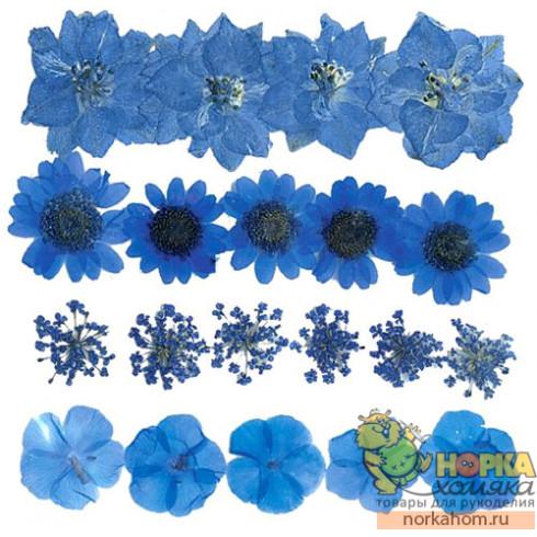 """Сухие цветы для декора """"Микс светло-синих"""""""