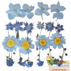 """Сухие цветы для декора """"Микс голубых"""""""