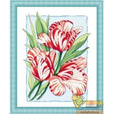 Пестрые тюльпаны