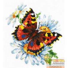 Бабочка и ромашки