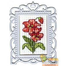 Красный цветок 1 (с рамкой)