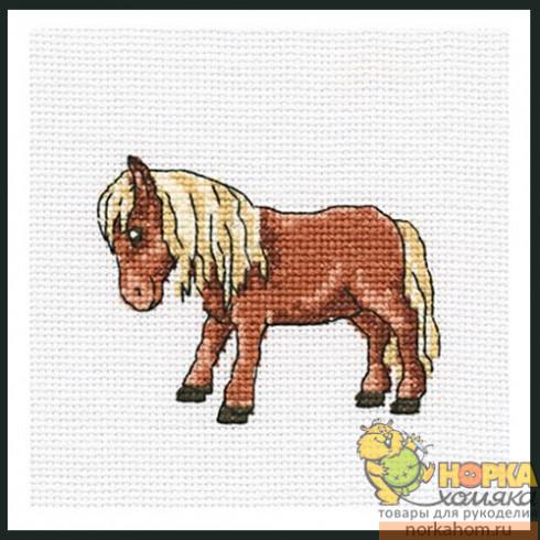 Тибетская лошадка