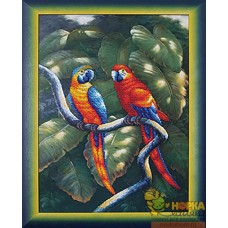Краски джунглей