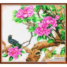 Пышное цветение сливы