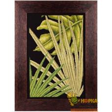 Пальмовые листья I