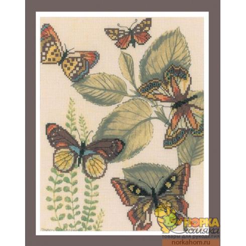 Царство бабочек II