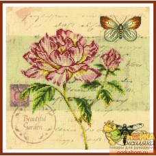 Почтовая открытка - Пион