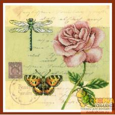 Почтовая открытка - Роза