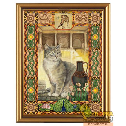 Кот из созвездия Водолей