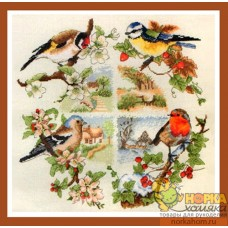 British Birds And Seasons