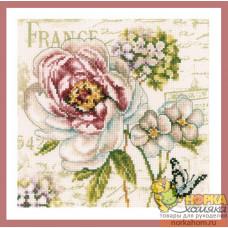 Marché de Fleurs III