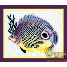 Сиреневая рыбка