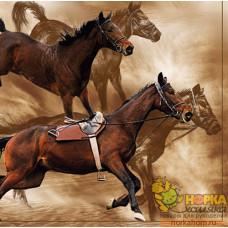 "Салфетка для декупажа ""Ретивые кони"""