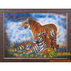 Туманное утро - Тигры